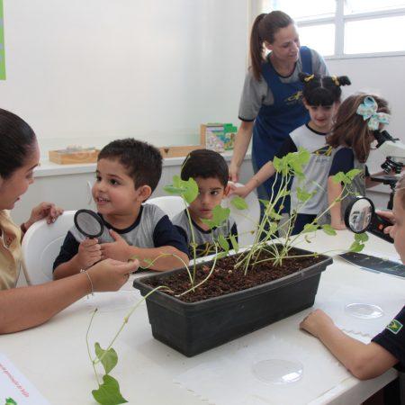 Educação Infantil – Laboratório de Ciências e Matemática